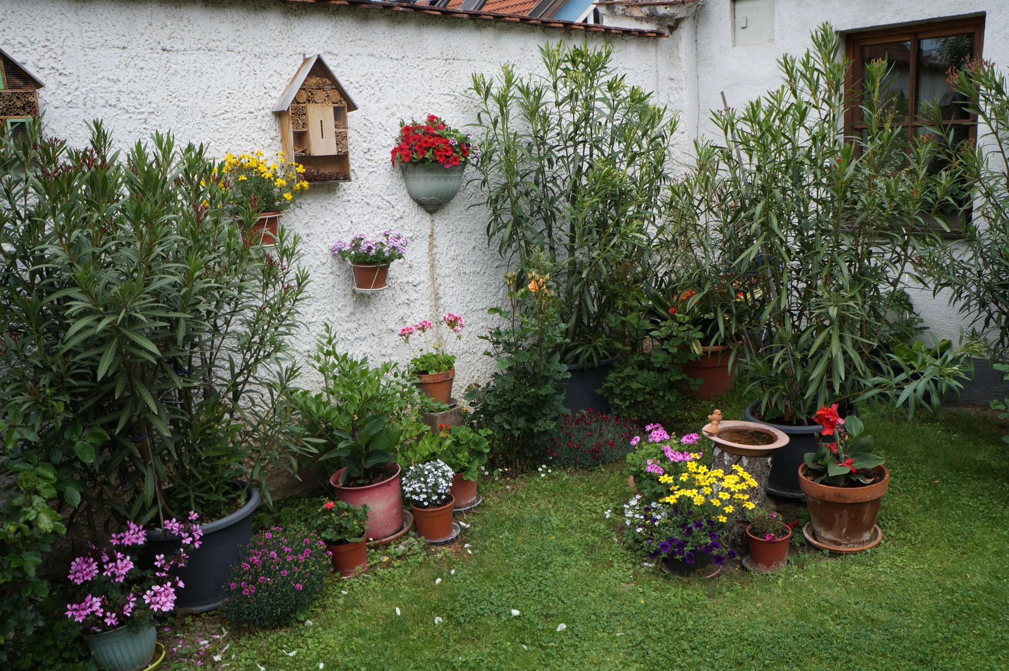 Tag der Gärten in der Gemeinde Horn