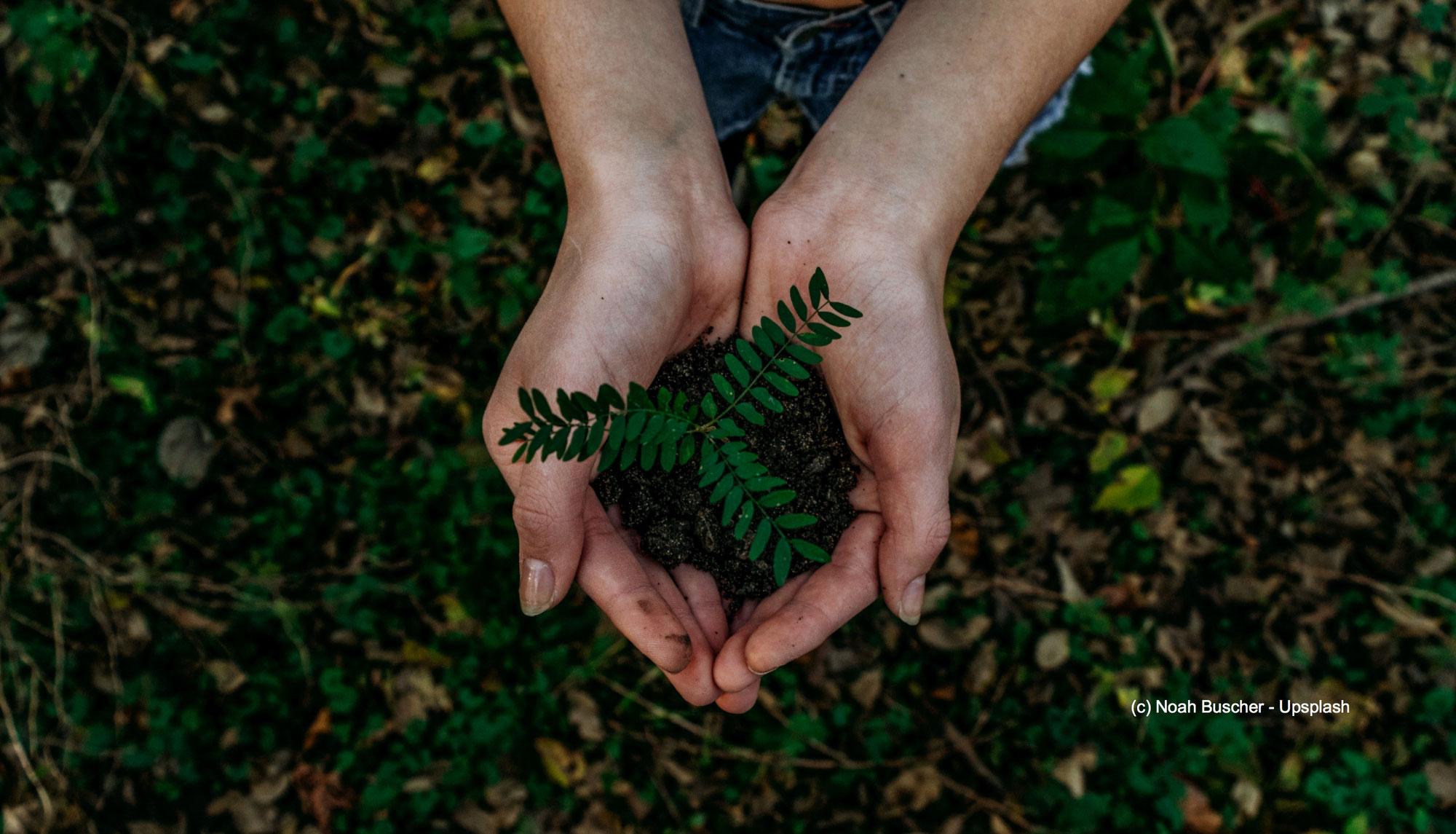 Sinnvollen Klimaschutz praktizieren