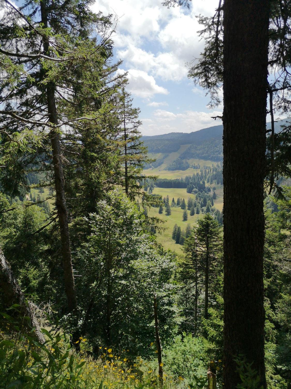 Fasten im Schwarzwald