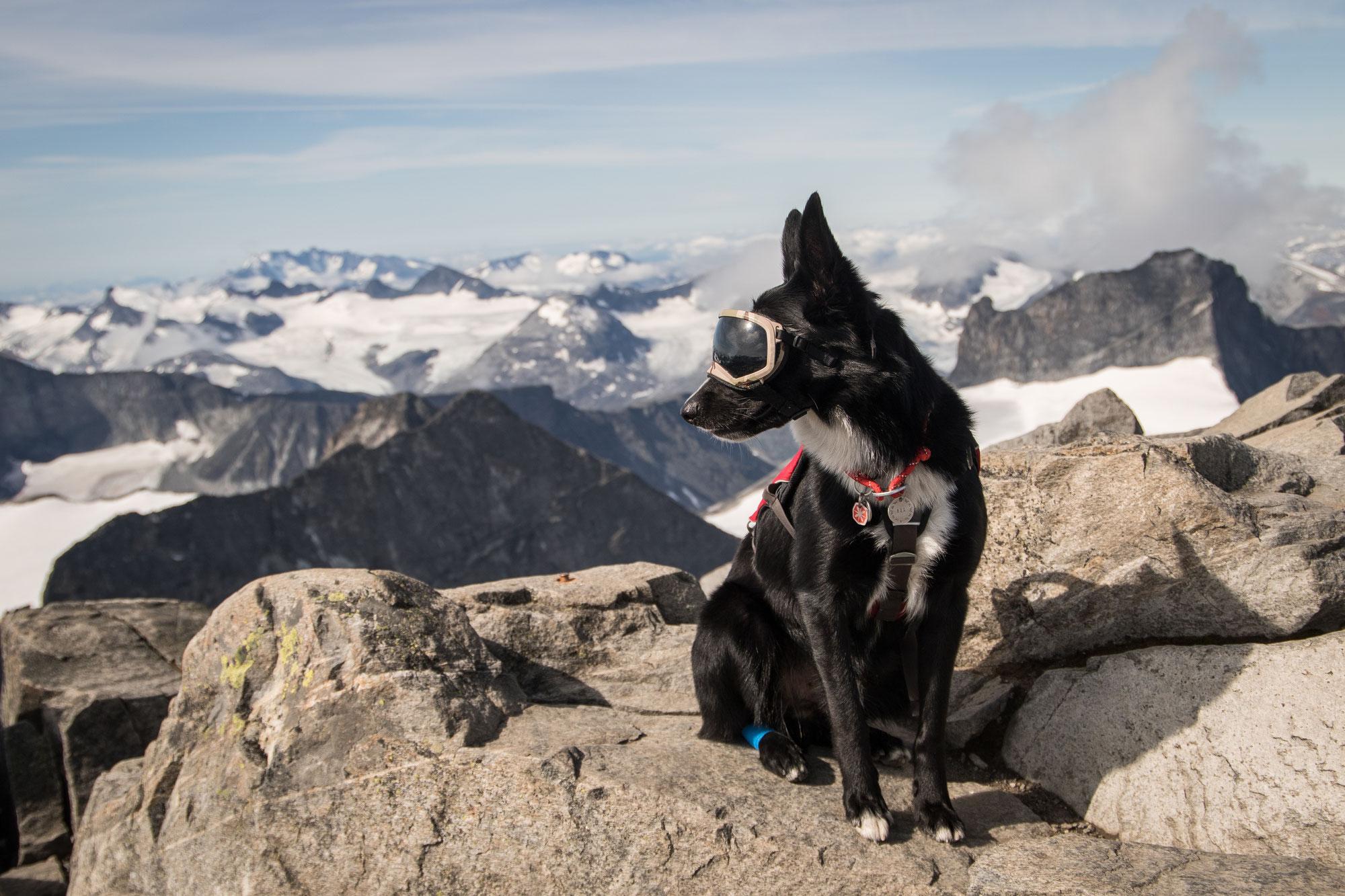 Norwegens Höchster Berg