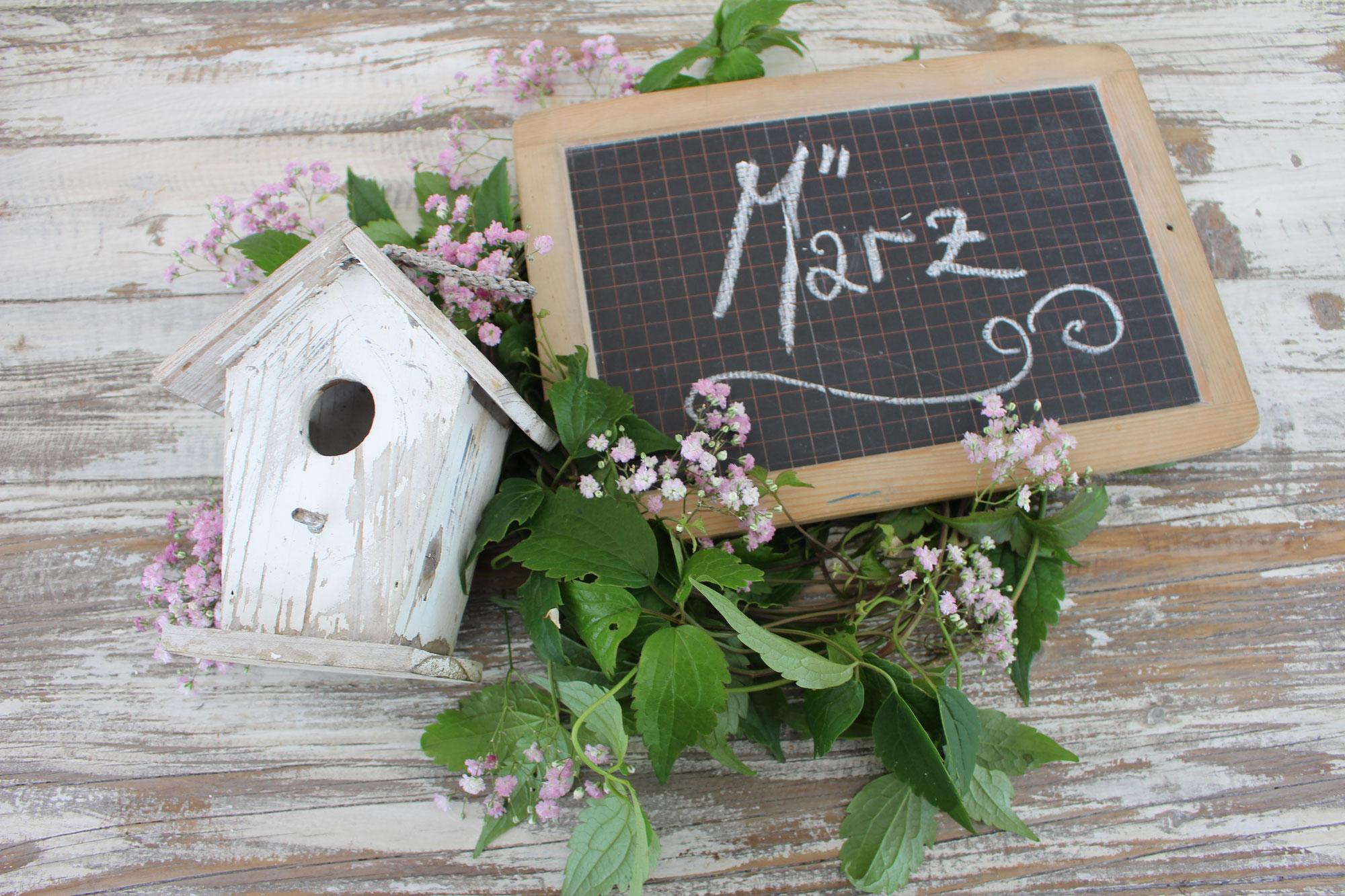 #März Garten