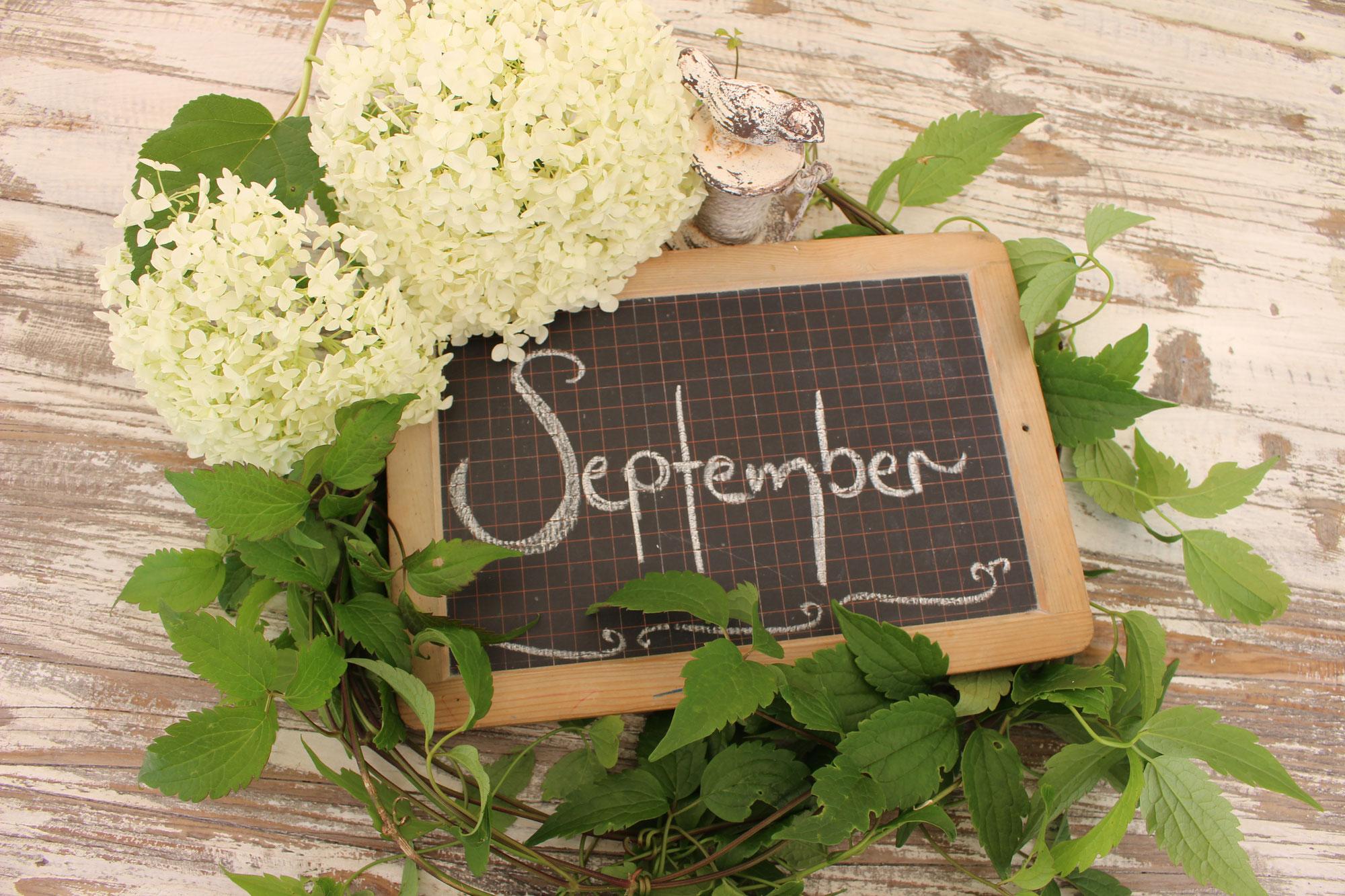 #September Garten