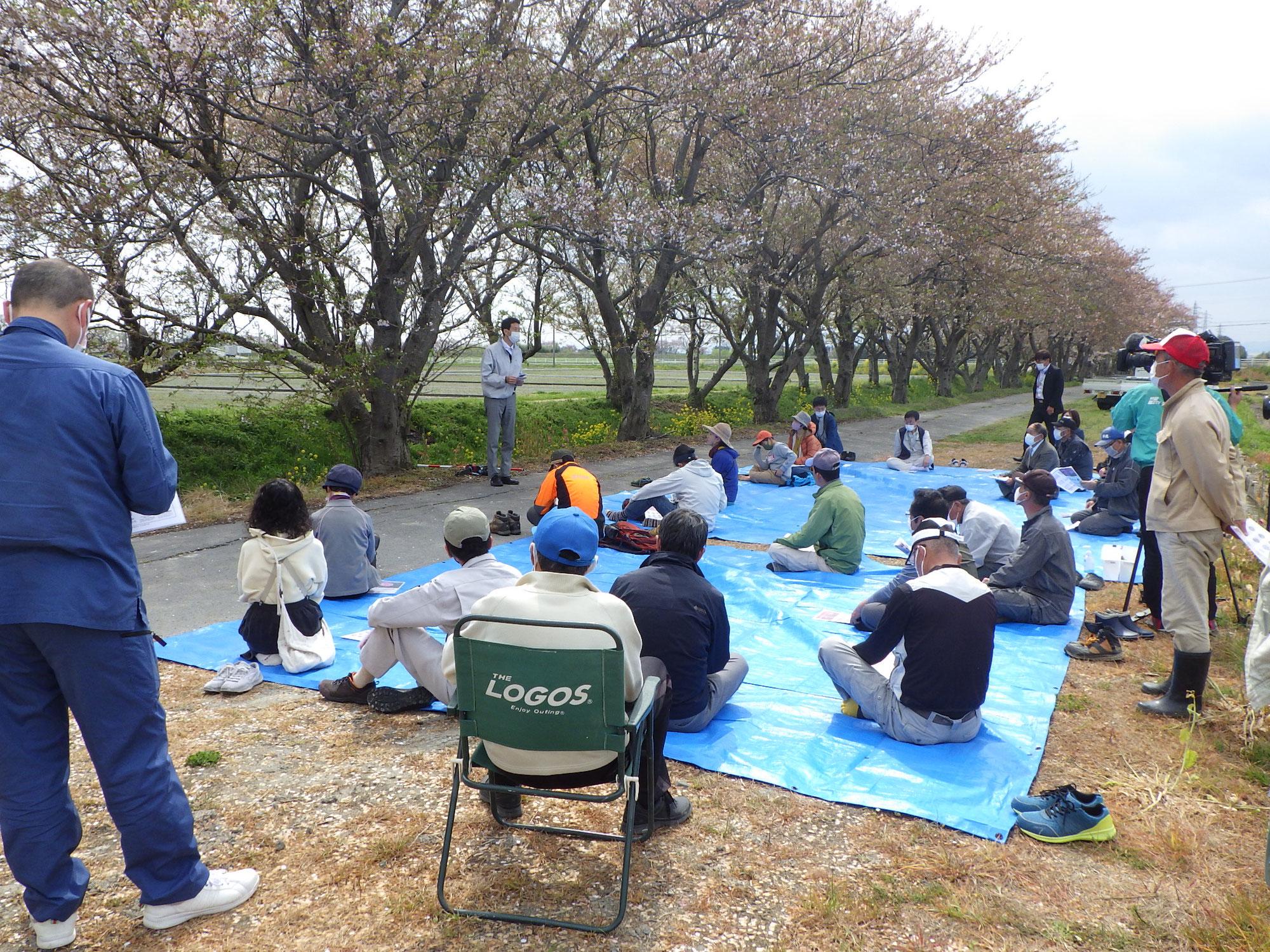 桜をよく見る桜守講座2021~桜の季節がやってきた