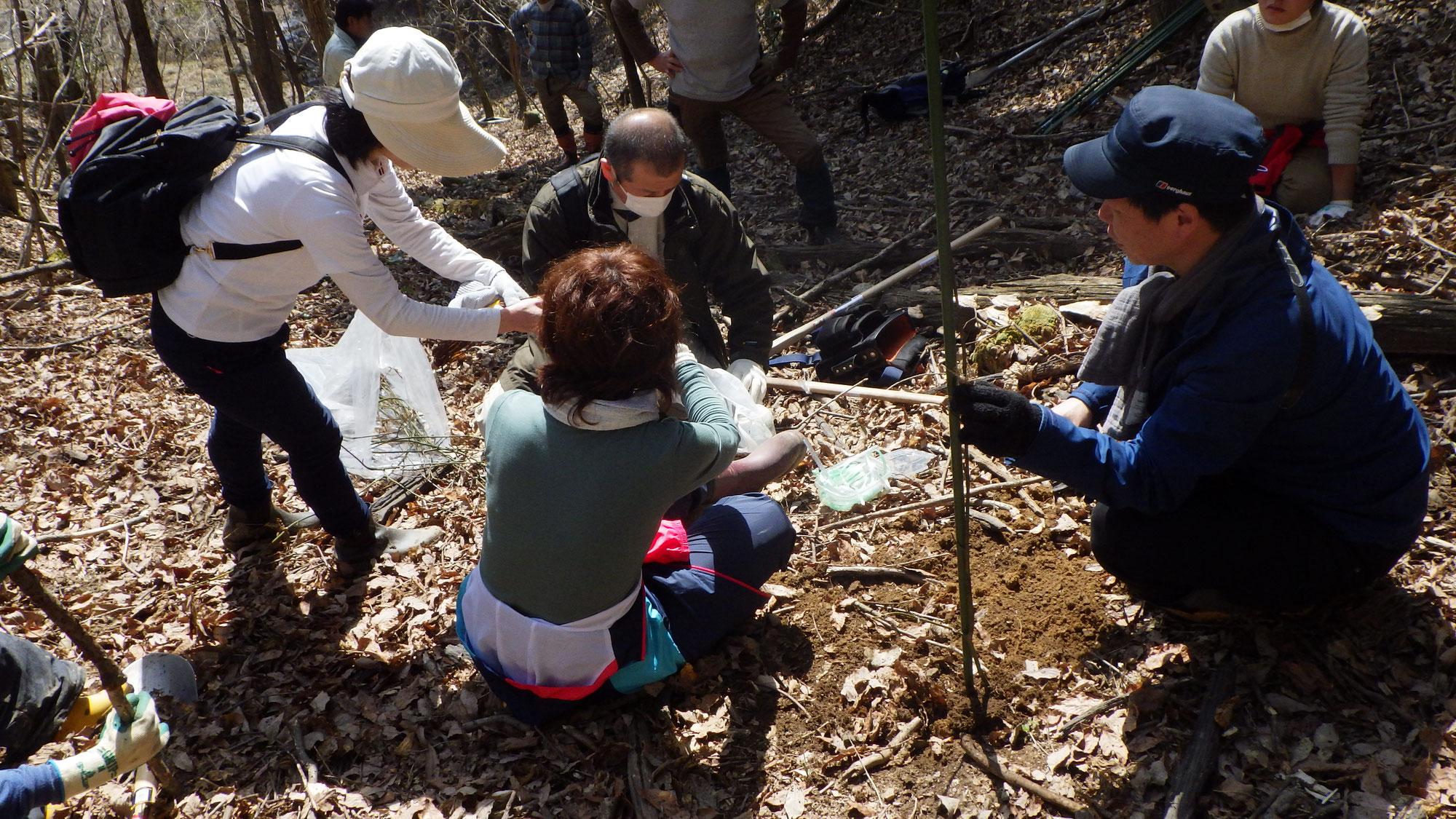集福寺かよえる森プロジェクト カエデ植樹