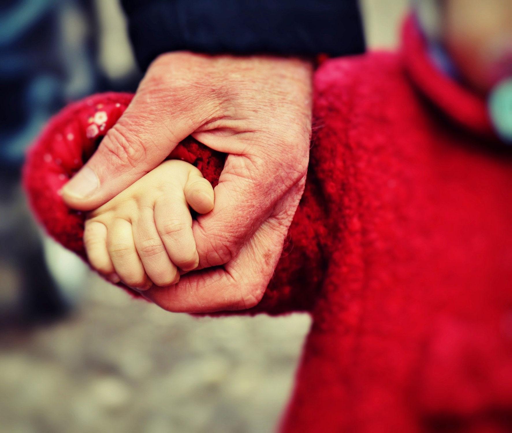 Salir más fuertes de la pandemia: aprovechar las primeras lecciones aprendidas