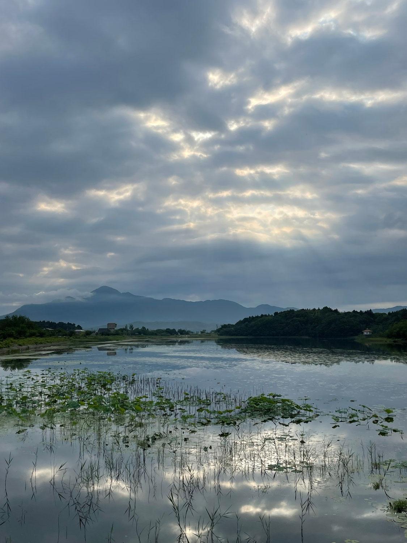 早朝 梅雨の合間の長峰散歩