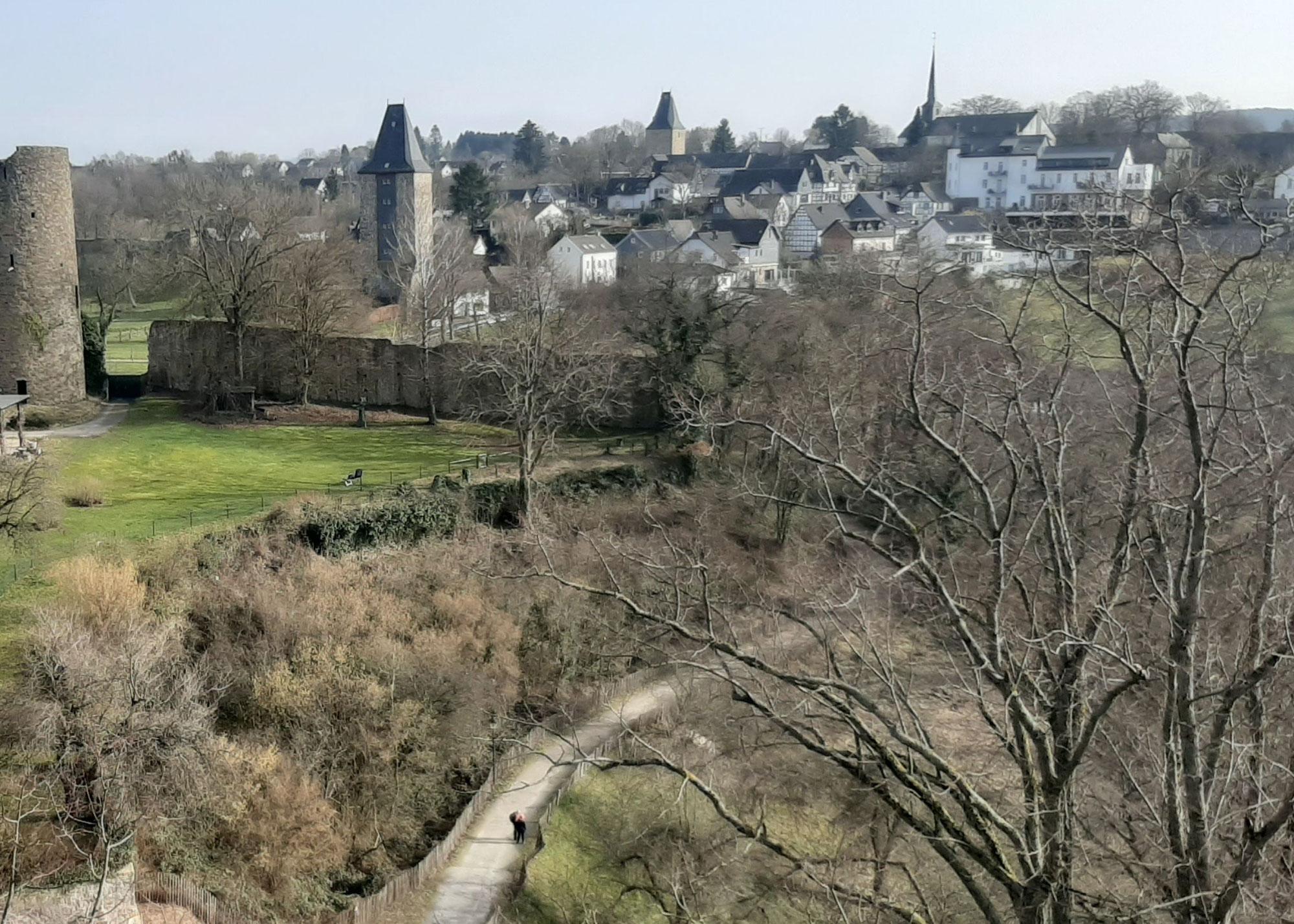 Fällarbeiten in Stadt Blankenberg