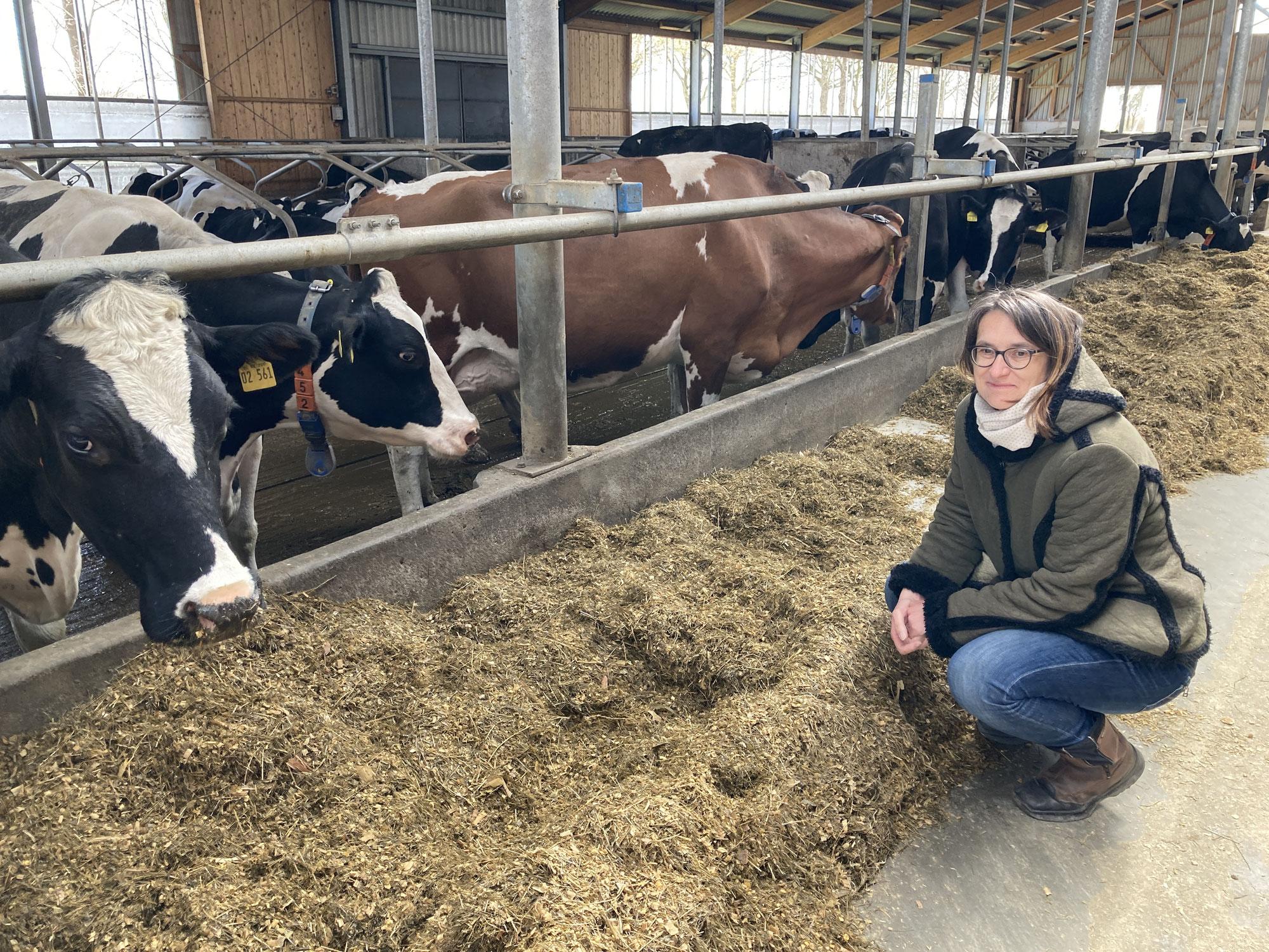 Klima trifft Agrar: Persönliche Blickwinkel vom Leben mit Kühen - mit und ohne Bio