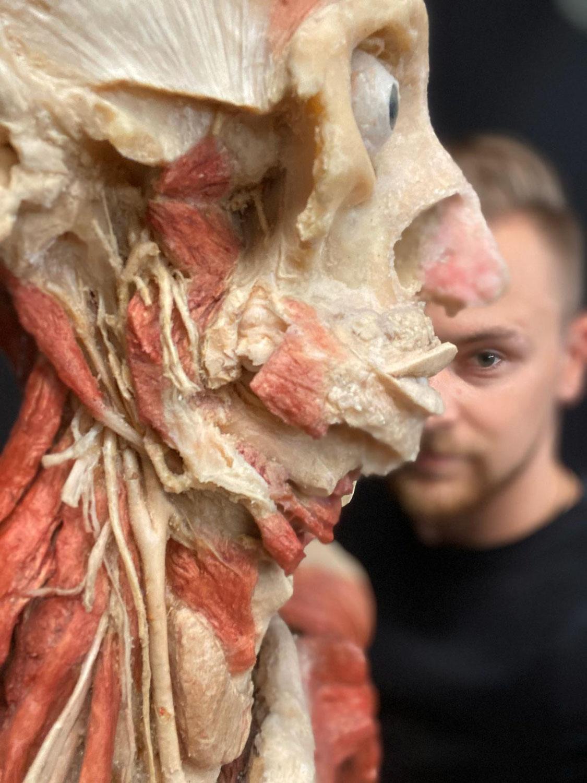 Außenstelle Praxis für Osteopathie in Leipzig