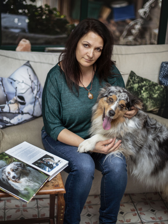 Lesetipps für Hundefreunde