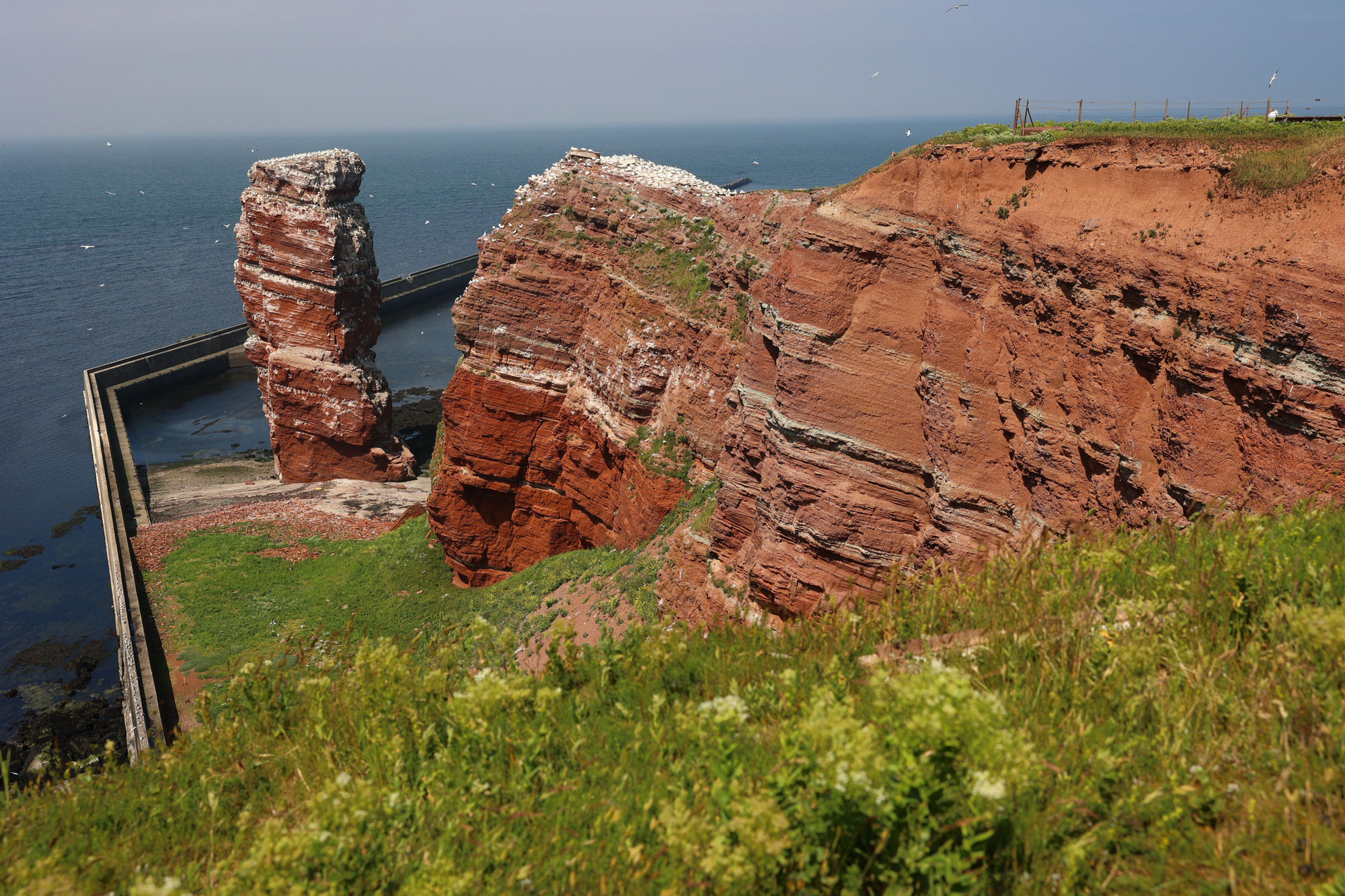 Tag 4 - Helgoland