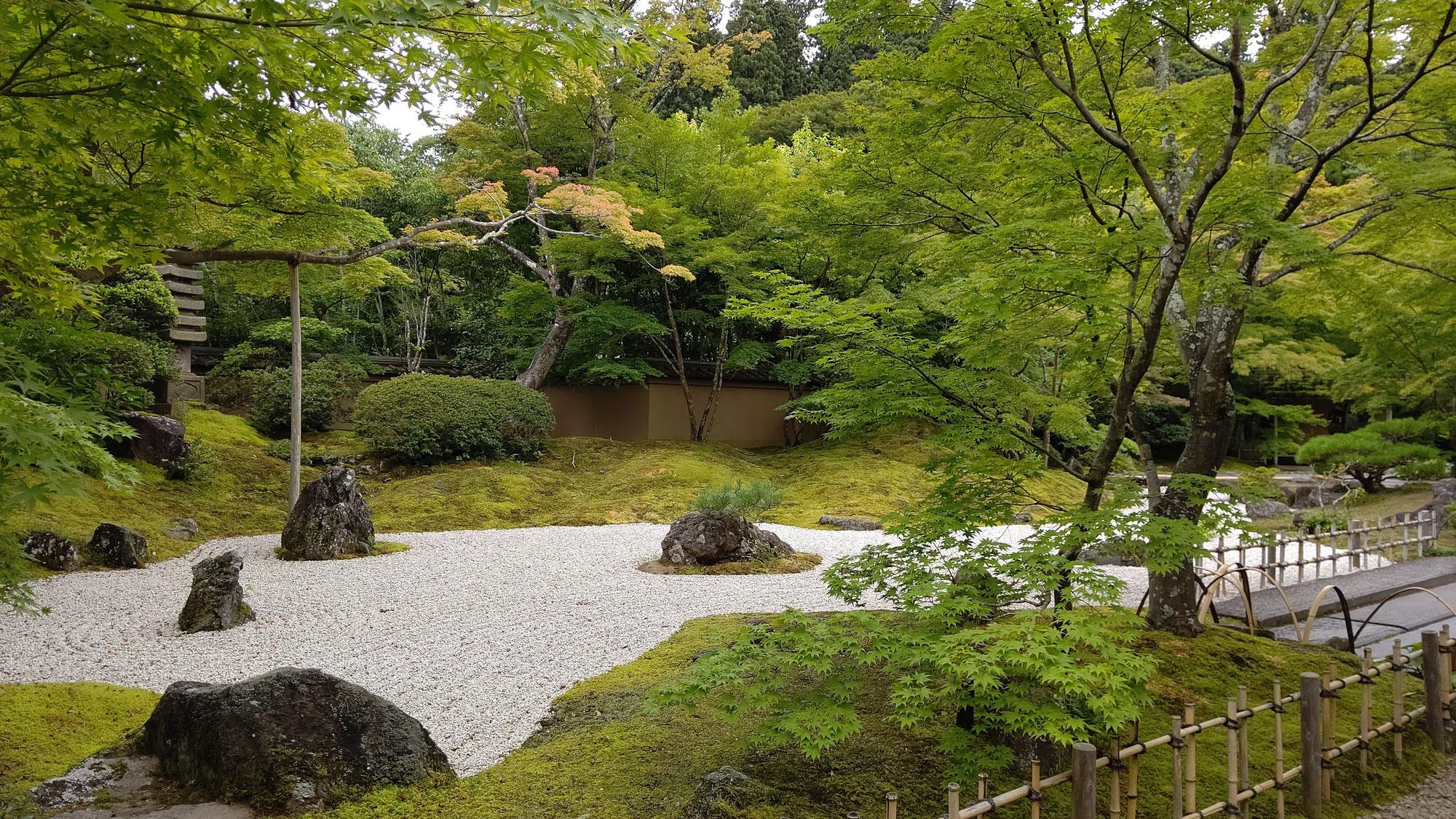 ニューズレター106号「日本三景の松島へ」