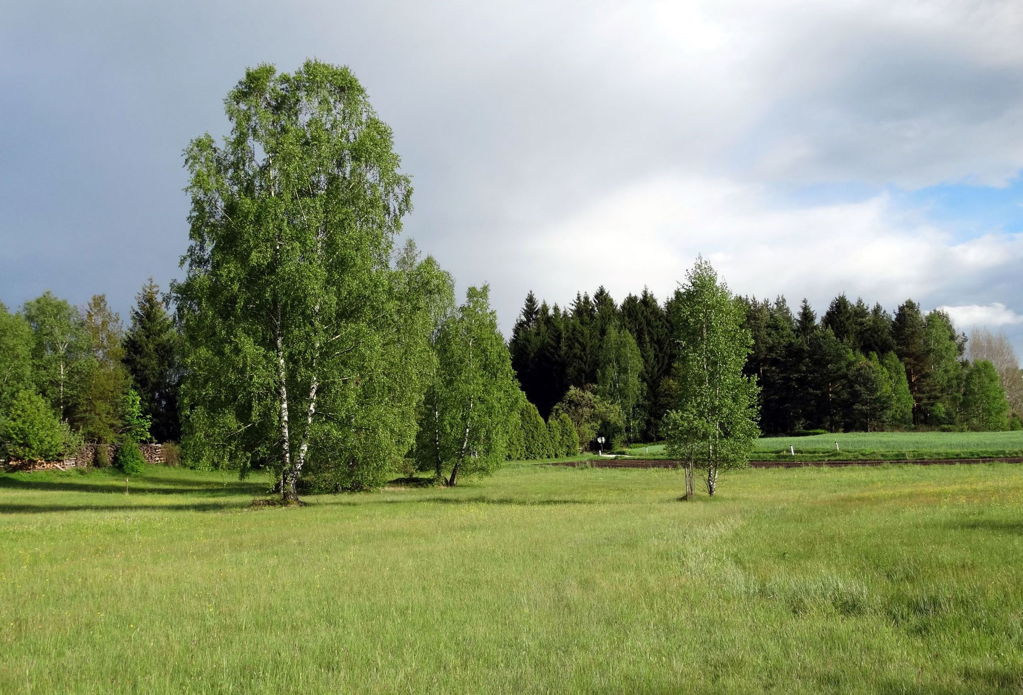 Waldviertel - steinreich