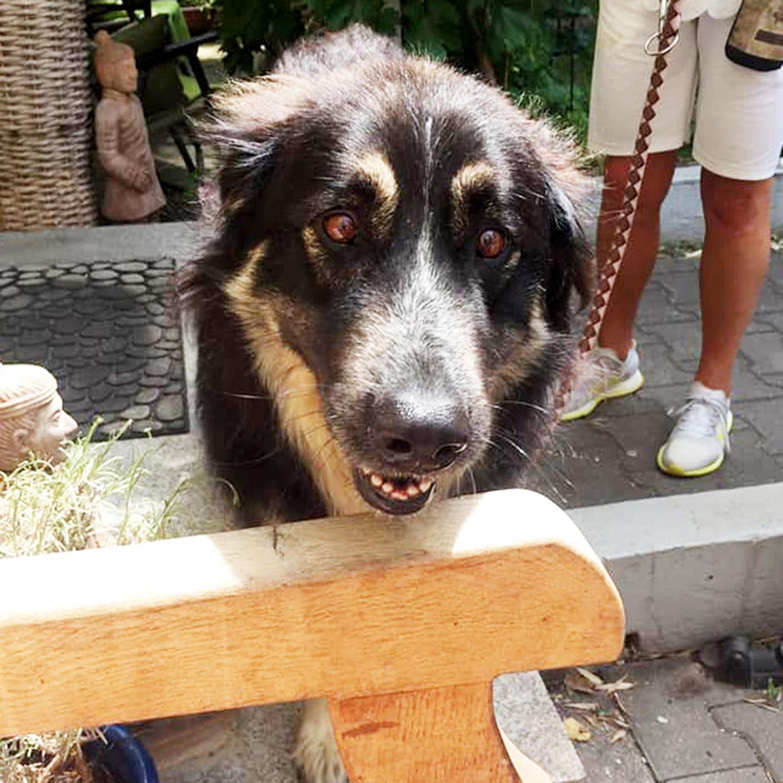 Jina hat in Deutschland ein Zuhause gefunden