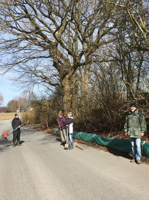 Krötenschutz in Schaalby