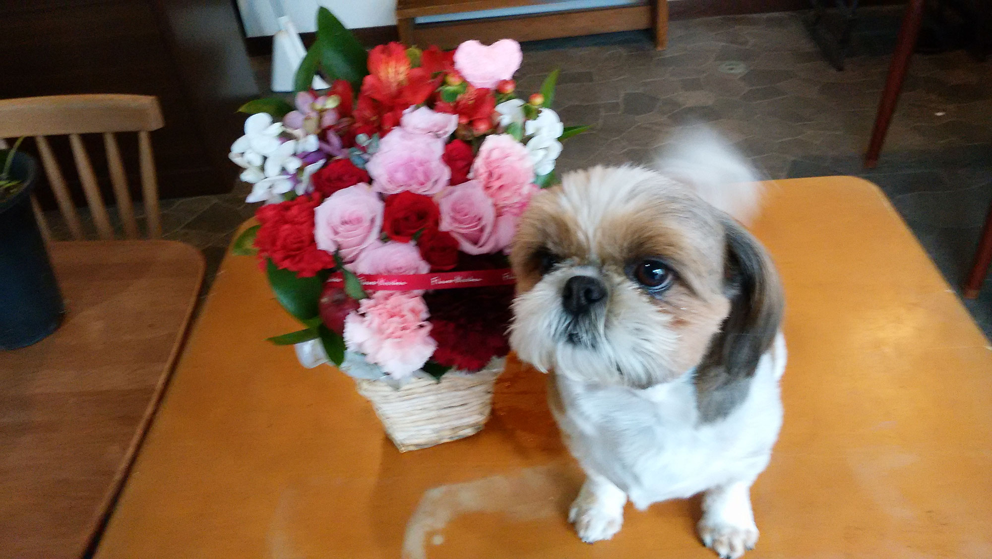 お花を送りましょう