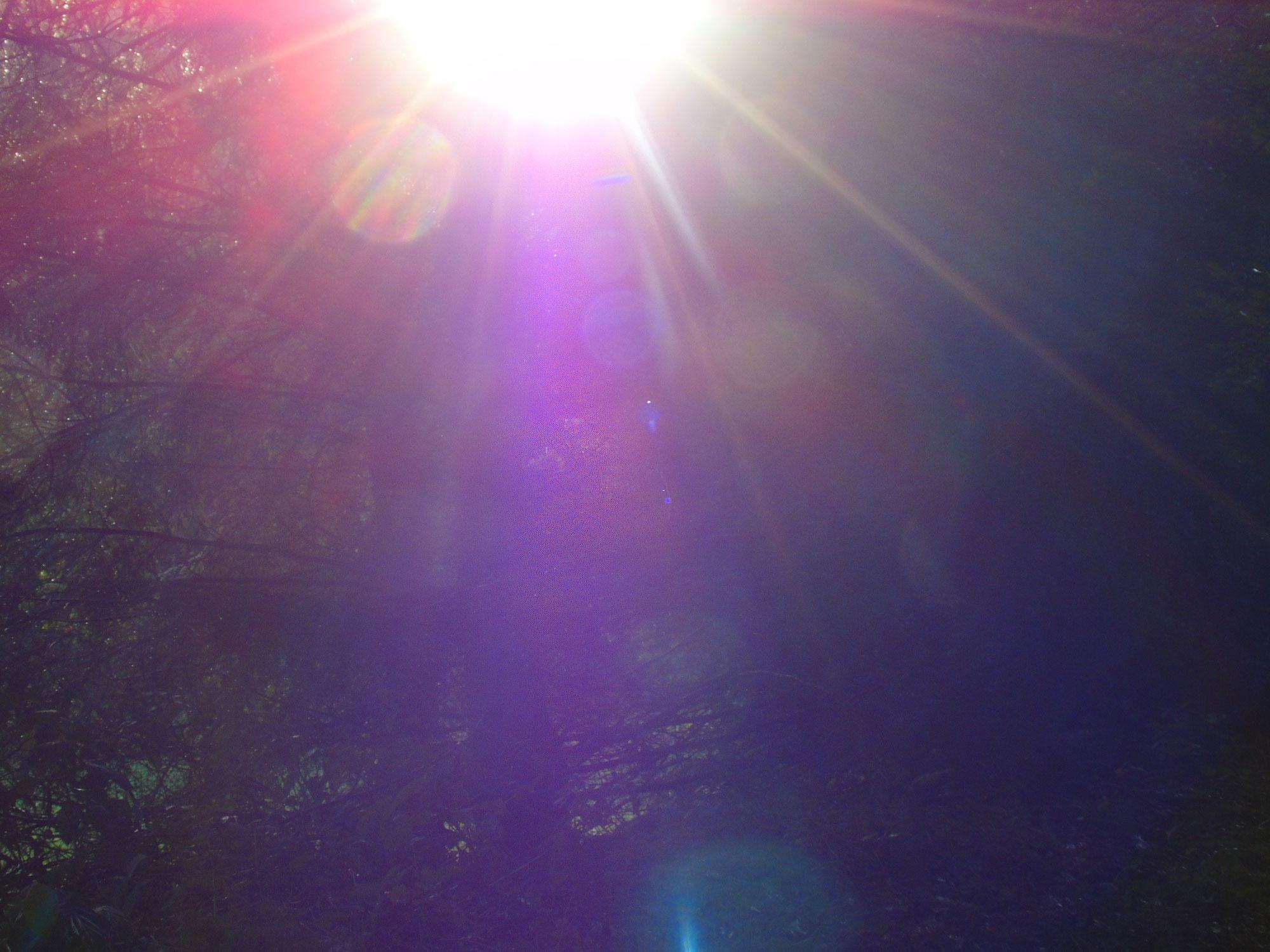 Öffne Dich für Wunder - oder: Das Licht ist immer da, Teil 8