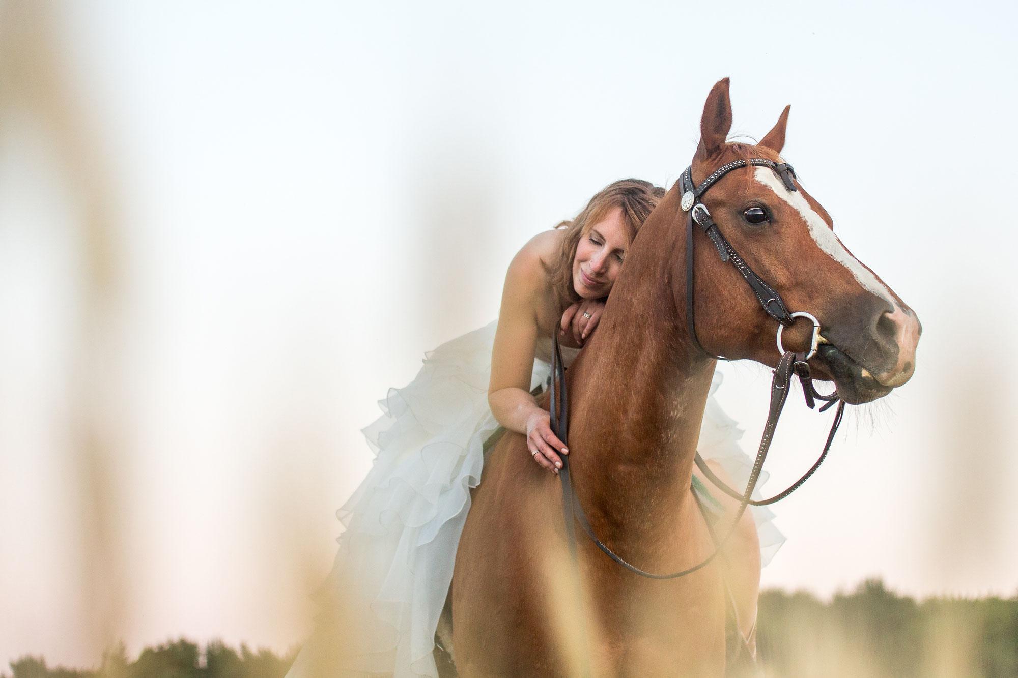 Een eigen paard: droom of drama?