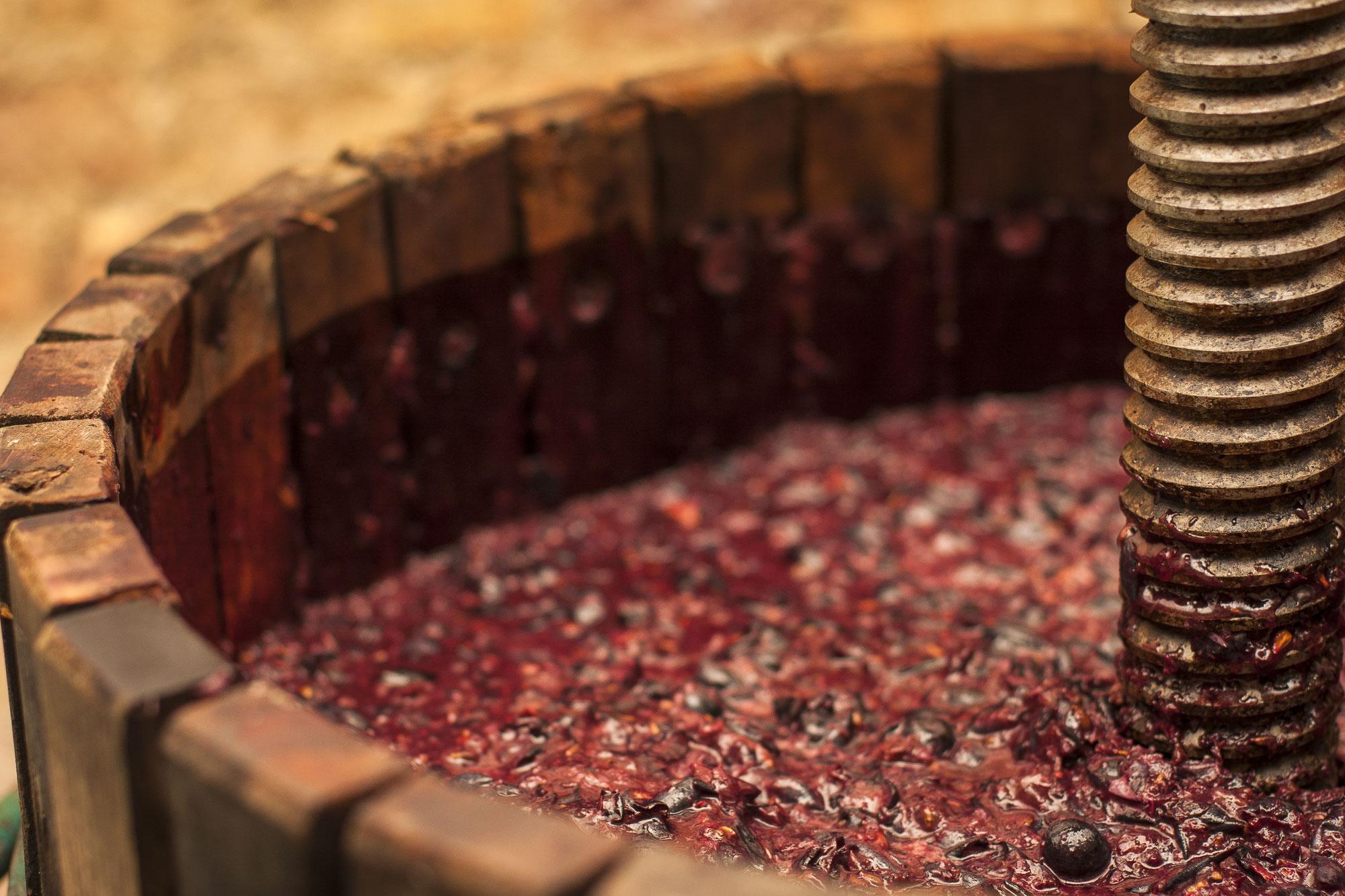 Quiz 8 : les appellations viticoles étrangères