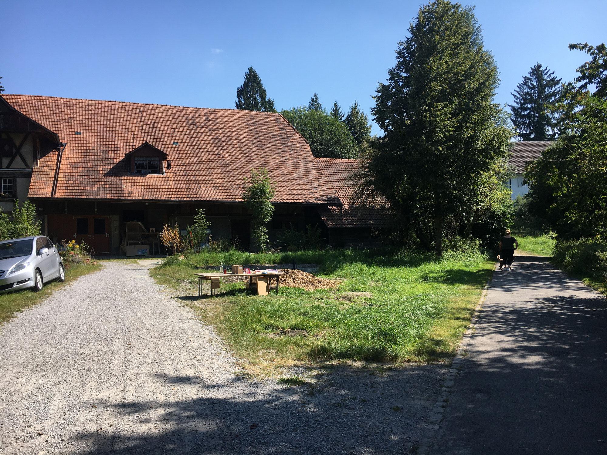 Bauernhaus Wyssloch: Umbau zur Tagesschule für 180 Kinder