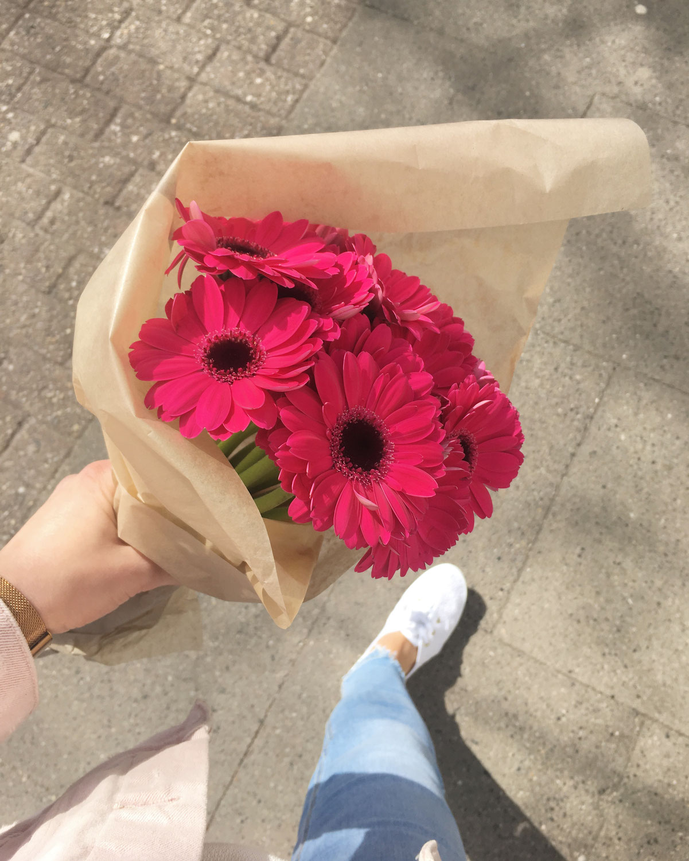 """Was kann ich tun, wenn das """"durch die Blume"""" sagen nicht reicht? 6 Tipps für erfolgreiche Gespräche"""