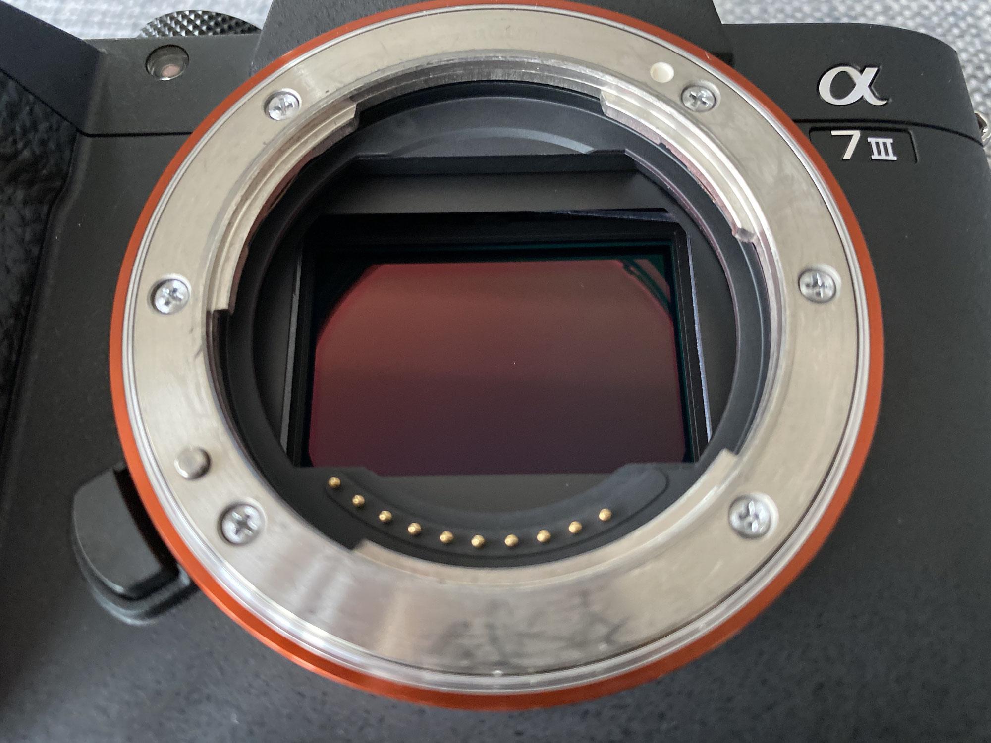 Kameratyp: Spiegelreflex vs. spiegellose Systemkamera