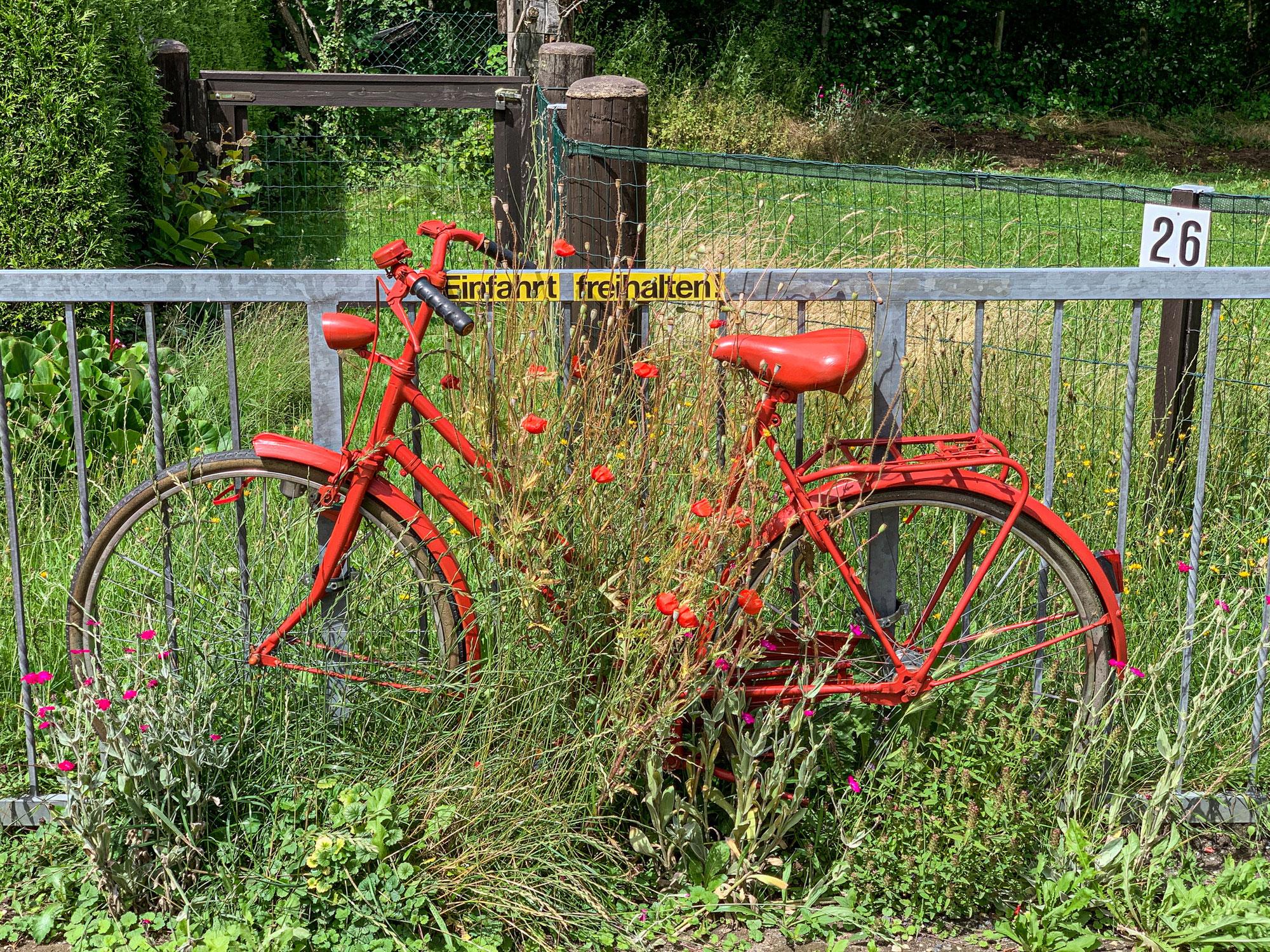 Fahrradtour nach Grefrath
