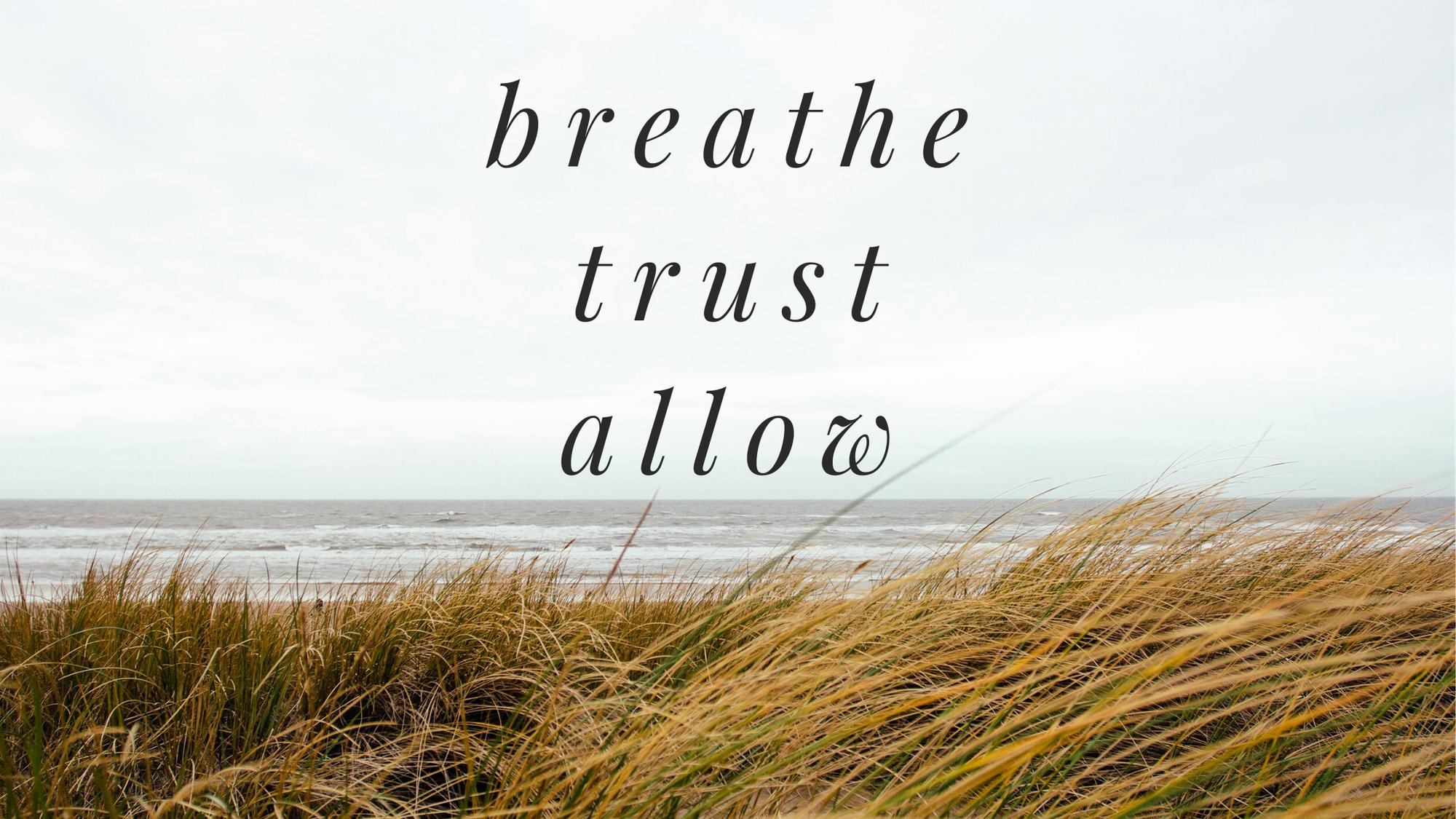 Breathe, Trust, Allow