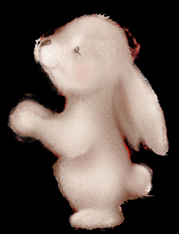 Bouille de lapin à habiller