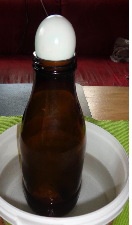 Kleine Forscher in Aktion: Der Geist in der Flasche