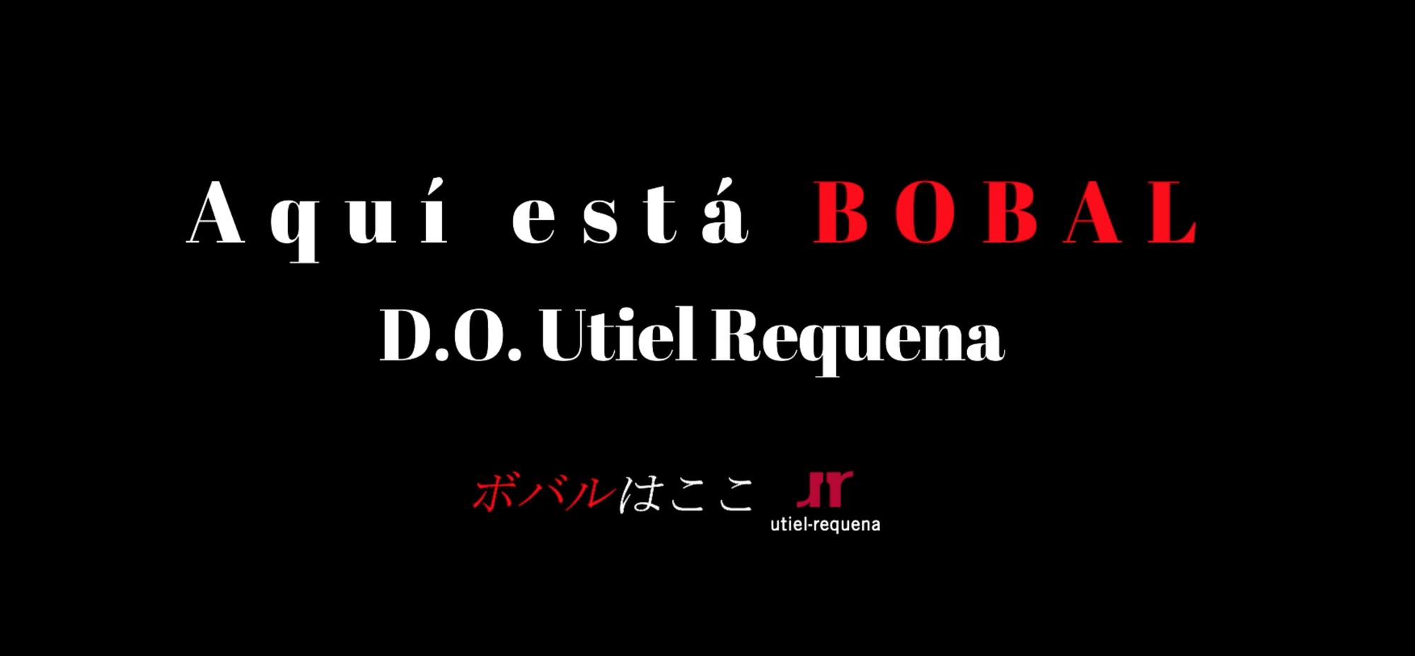 ¡Aquí está BOBAL! 「ボバルはここ!」