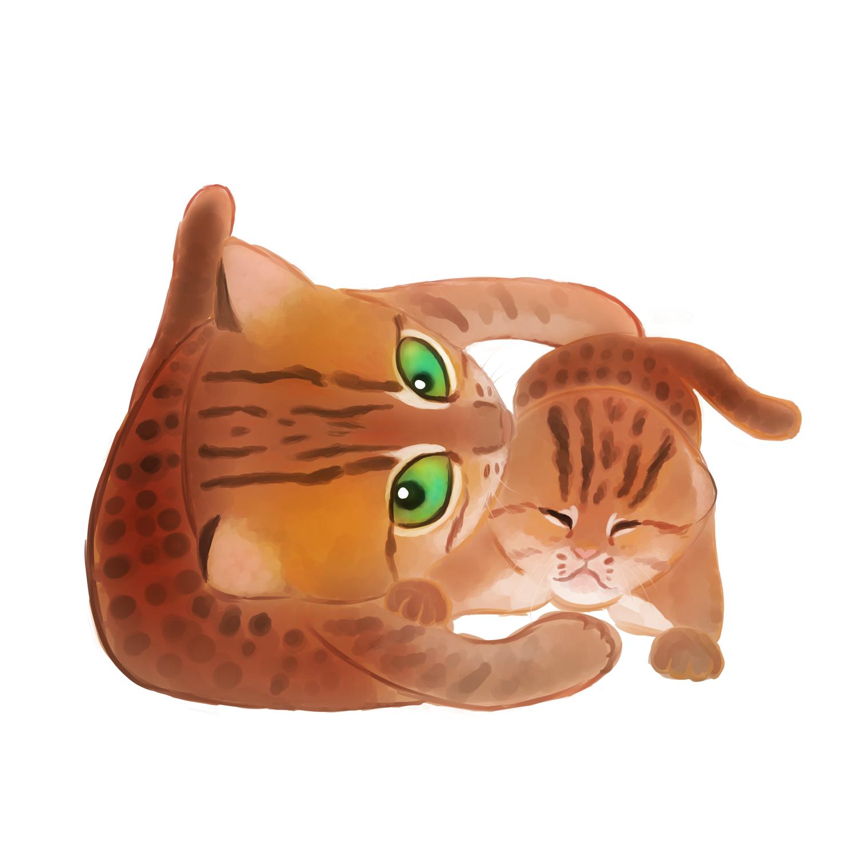 世界最小クラスの猫『サビイロネコ』