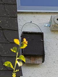 Kleiner Fledermauskasten für Gebäude