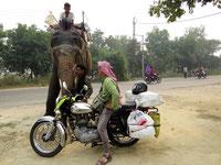 Mit der Enfield durch Indien