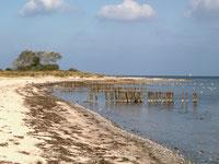Strand im NSG Kleiner Binnensee (I. Ludwichowski)