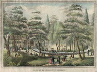 Pleasure Railways-Elysian Fields, 1800's