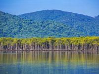 タンザニアの世界遺産「ンゴロンゴロ保全地域」のクロサイ