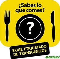 NO COMPRES ALIMENTOS TRANSGENICOS