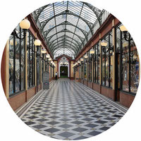 Private tour Paris covered galleries