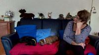 Fee und Shiele im neuen Zuhause