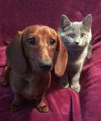 Greta & Garbo (Ninifee)