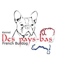 Französische Bulldoggen Des pays-bas