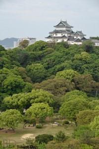 昨日わざわざ城に行きましたが、ホテルの部屋から見た和歌山城が一番サマになってた件