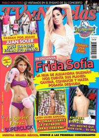 TV y NOVELAS MEXICO OCT 2013