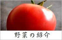 スリーエフ農法の無農薬野菜 野菜