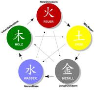 Heilsamer Wandel, Akupunktur, Persönlichkeitsentfaltung, Olching