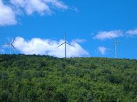 Clarke Creek Wind Farm QLD