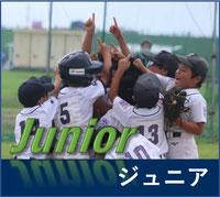 東練馬リトルリーグ ジュニアチーム