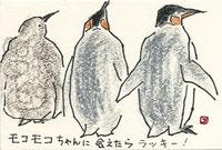 キングペンギン 親子