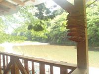 テラスから川へおりるだけ